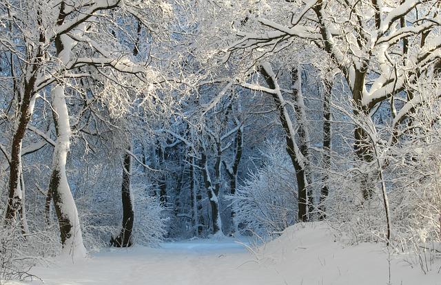 Winter shredding Ep. 1 – Starting point