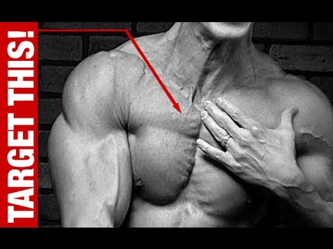 The ultimate chest workout plan for muscle mass - Gainsthetics