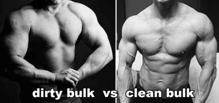 dirtybulk-vs-cleanbulk-doxtor